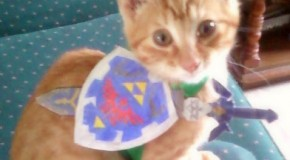 I Can Haz Triforce?
